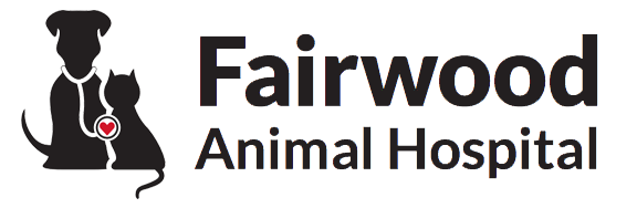 Veterinarians Spokane Washington | Fairwood Animal Hospital